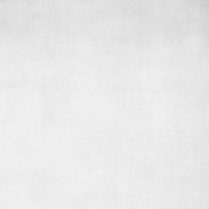 Gres Shadow White Rett. Polished 59x59